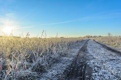 Πρώτος παγετός Στοκ φωτογραφία με δικαίωμα ελεύθερης χρήσης