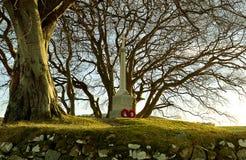 Πρώτο μνημείο παγκόσμιου πολέμου, Σκωτία, που περιβάλλεται από τα δέντρα Στοκ Φωτογραφίες