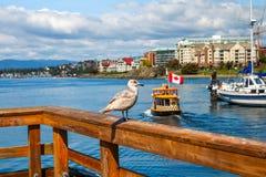 Πρώτο σπίτι έθνους στις θέσεις επάνω από το νερό Στοκ φωτογραφίες με δικαίωμα ελεύθερης χρήσης