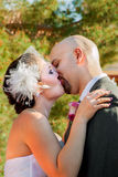 Πρώτο φιλί νεόνυμφων νυφών στοκ εικόνες με δικαίωμα ελεύθερης χρήσης