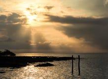 Πρώτο φως της ημέρας στοκ εικόνες με δικαίωμα ελεύθερης χρήσης