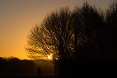 Πρώτο φως Στοκ φωτογραφία με δικαίωμα ελεύθερης χρήσης