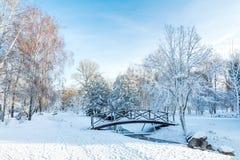 Πρώτο χιόνι στο πάρκο πόλεων με τα δέντρα κάτω από το φρέσκο χιόνι στο sunri Στοκ φωτογραφίες με δικαίωμα ελεύθερης χρήσης