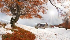 πρώτο χιόνι φθινοπώρου ξαφν&i Στοκ Εικόνα