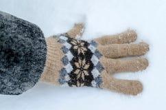 πρώτο χιόνι Στοκ Εικόνες