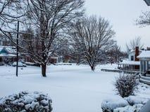 πρώτο χιόνι Στοκ Φωτογραφία