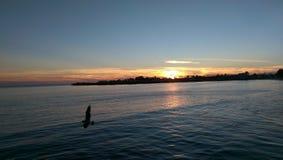 Πτήση ηλιοβασιλέματος Στοκ εικόνα με δικαίωμα ελεύθερης χρήσης