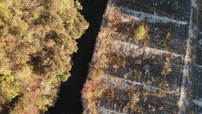 Πτήση πέρα από τη στέγη του παλαιού φρουρίου, δεύτερος παγκόσμιος πόλεμος απόθεμα βίντεο