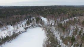 Πτήση πέρα από τη χιονισμένη λίμνη με το παγωμένο νερό προς το δάσος φιλμ μικρού μήκους