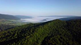 Πτήση πέρα από τις αιχμές βουνών, ηλιοβασίλεμα, πτήση επάνω από το δάσος βουνά, κεραία Dovbush, μύγα πέρα από τους βράχους, φιλμ μικρού μήκους