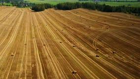 Πτήση πέρα από τους καλλιεργημένους τομείς με τις θυμωνιές χόρτου μετά από να συγκομίσει εναέρια πανοραμική όψη φιλμ μικρού μήκους