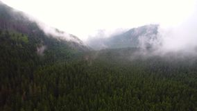 Πτήση πέρα από το δάσος στα βουνά απόθεμα βίντεο