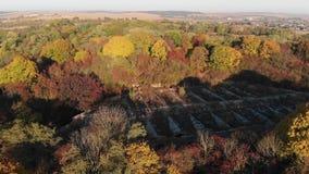 Πτήση πέρα από το παλαιό φρούριο στο δάσος απόθεμα βίντεο