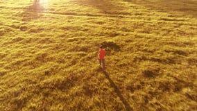 Πτήση πέρα από το φίλαθλο άτομο που τρέχει στο τέλειο πράσινο αγροτικό λιβάδι χλόης πλαϊνό Ηλιοβασίλεμα στο βουνό απόθεμα βίντεο