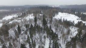 Πτήση πέρα από το χειμερινό δασικό τοπίο στο νεφελώδη καιρό με χιονοπτώσεις φιλμ μικρού μήκους