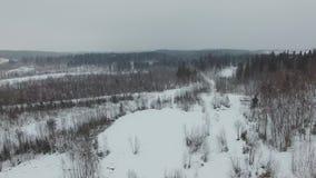 Πτήση πέρα από το χειμερινό δασικό τοπίο στο νεφελώδη καιρό με χιονοπτώσεις απόθεμα βίντεο