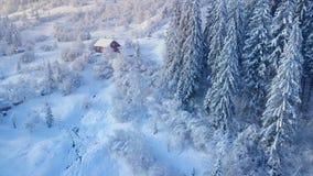 Πτήση πέρα από το χιονώδες κωνοφόρο δάσος βουνών στο ηλιοβασίλεμα Σαφής ηλιόλουστος παγωμένος καιρός Καμπίνα στα βουνά, χειμώνας φιλμ μικρού μήκους