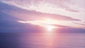 πτήση πέρα από το ύδωρ ηλιοβασίλεμα θάλασσας φοινικών φύλλων απόθεμα βίντεο