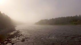 Πτήση πρωινού πέρα από το misty ποταμό φιλμ μικρού μήκους
