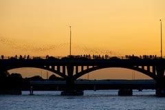 πτήση ροπάλων Στοκ φωτογραφίες με δικαίωμα ελεύθερης χρήσης