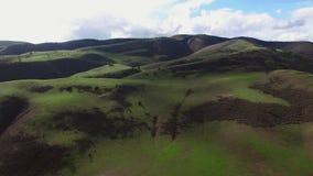 Πτήση Copter πέρα από τους ευρείς πράσινους τομείς και τους λόφους απόθεμα βίντεο