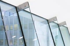 Πτερύγια γυαλιού Στοκ Εικόνα