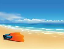Πτερύγια στην παραλία ελεύθερη απεικόνιση δικαιώματος