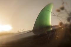 Πτερύγιο κυματωγών Στοκ φωτογραφία με δικαίωμα ελεύθερης χρήσης