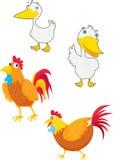 πτηνά απεικόνιση αποθεμάτων
