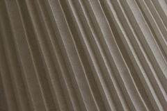 Πτυχή μανιταριών Στοκ φωτογραφία με δικαίωμα ελεύθερης χρήσης