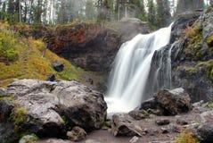 Πτώσεις αλκών στο εθνικό πάρκο Yellowstone Στοκ Εικόνες