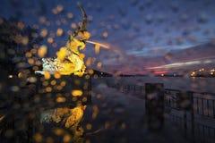 Πτώσεις βροχής στη κάμερα φίλτρων Στοκ φωτογραφία με δικαίωμα ελεύθερης χρήσης