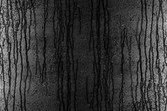 Πτώσεις βροχής στο γυαλί Στοκ φωτογραφίες με δικαίωμα ελεύθερης χρήσης