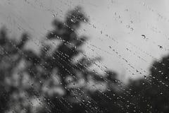 Πτώσεις βροχής Στοκ Εικόνα