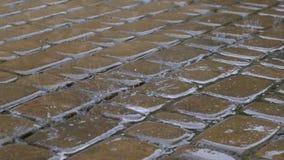 Πτώσεις θερινής βροχής στο πεζοδρόμιο απόθεμα βίντεο