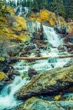 Πτώσεις κολπίσκου σύγχυσης, εθνικό πάρκο ιασπίδων, Αλμπέρτα, Καναδάς Στοκ Φωτογραφία