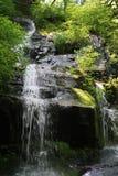 Πτώσεις κοτών wallow στο μεγάλο καπνώές εθνικό πάρκο 3 βουνών Στοκ Εικόνες