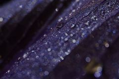 Πτώσεις νερού σαφής υδατώδης βροχερός μετά από να βρέξει r στοκ φωτογραφία με δικαίωμα ελεύθερης χρήσης