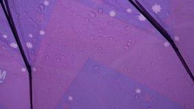 Πτώσεις νερού σε μια ομπρέλα απόθεμα βίντεο