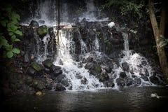 Πτώσεις νερού στοκ εικόνες