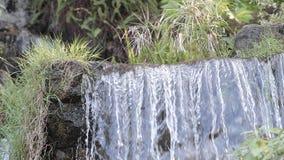 Πτώσεις νερού απόθεμα βίντεο