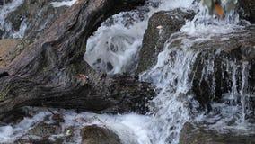 Πτώσεις νερού 4K απόθεμα βίντεο