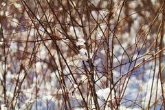 Πτώσεις πάγου Στοκ φωτογραφία με δικαίωμα ελεύθερης χρήσης