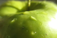 Πτώσεις δροσιάς στο μήλο στοκ εικόνες με δικαίωμα ελεύθερης χρήσης