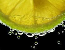 Πτώσεις σε ένα λουλούδι Στοκ εικόνες με δικαίωμα ελεύθερης χρήσης