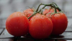 Πτώσεις στις ώριμες ντομάτες κλείστε επάνω φιλμ μικρού μήκους