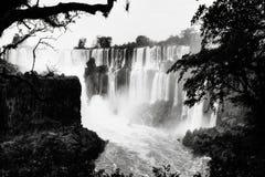 Πτώσεις της Αργεντινής Iguazu Στοκ φωτογραφίες με δικαίωμα ελεύθερης χρήσης