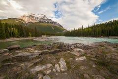 πτώσεις του Καναδά athabasca στοκ φωτογραφία με δικαίωμα ελεύθερης χρήσης