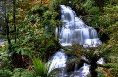 Πτώσεις τρίδυμων, κρατικό πάρκο Otway, Αυστραλία Στοκ Εικόνες