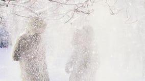 Πτώσεις χιονιού από τον κλάδο Ένα ζεύγος καλύπτει το κεφάλι του με μια κουκούλα κίνηση αργή φιλμ μικρού μήκους
